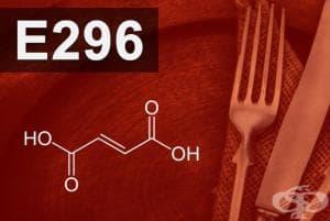 E296 - Ябълчена киселина (Malic acid)