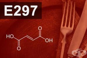 E297 - Фумарова киселина (Fumaric acid)