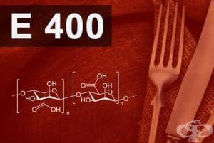 E400 - Алгинова киселина (Alginic acid)