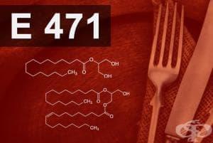E471 - Моно- и диглицериди на мастни киселини (Monodi glycerides of fatty acids)