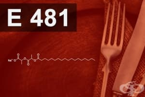 E481 - Натриев стеароил-2- лактилат (Sodium stearoyl-2-lactylate)