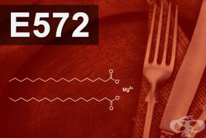 E572 - Магнезиев стеарат (Magnesium stearate)