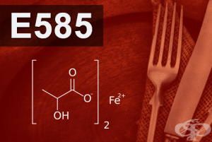 E585 - Железен лактат (Ferrous lactate)