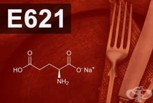 E621 - Мононатриев глутамат (Monosodium glutamate (MSG))