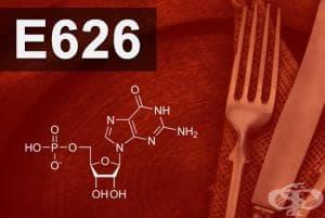 E626 - Гуанилова киселина (Guanylic acid)