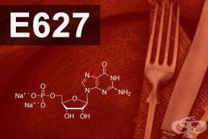 E627 - Динатриев гуанилат (Disodium guanylate)