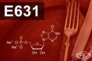 E631 - Динатриев инозинат (Disodium inosinate)