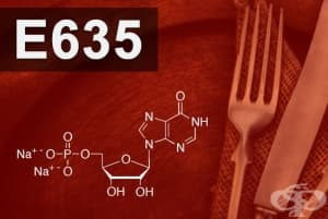 E635 - Динатриев 5-рибонуклеотид (Disodium 5-ribonucleotide)