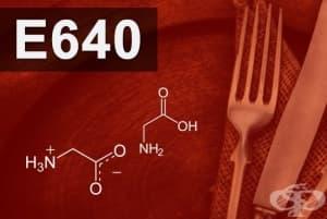 E640 - Глицин и натриевата му сол (Glycine its sodium salt)