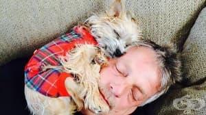 20 бащи, които не искали куче в живота си…