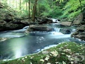 Методи за пречистване на вода, които древните хора са ползвали