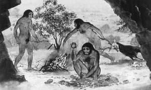 Биологично-еволюционни загадки, свързани с неандерталците и хабилисите