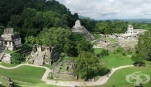 Нова теория обяснява какво е унищожило цивилизацията на маите