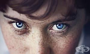 Всички хора със сини очи имат един общ прародител