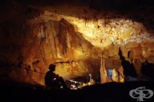 Кухня от времето на Каменната епоха е намерена на дъното на езеро