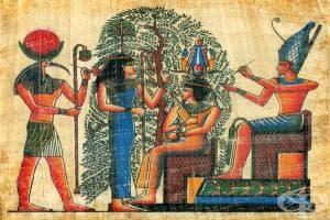 Наблюдения на староегипетските медици, описващи болести на храносмилателната система