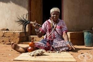 Основи на традиционната субсахарска медицина
