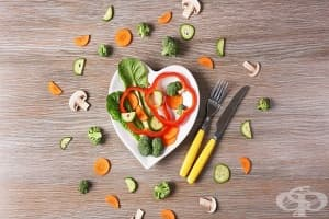 Ролята на метаболизма в живота на човека. Храни и фактори, повлияващи процеса - Част 2