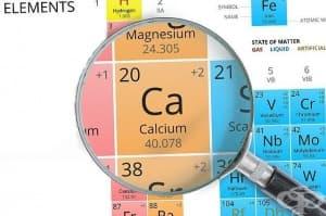 10 хранителни продукта, в които има повече калций, отколкото в изварата - част 2