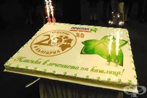 Теодора Петрова, управляващ партньор във Ведра: 20 години успех = качествен продукт + качествен екип