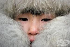 Добре дошли в най-студения населен град в света – Оймякон в Сибир (Галерия)