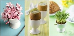 5 алтернативни приложения на поставката за яйца