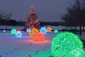Направете си коледни светлинни топки за вашата градина (стъпки в снимки)