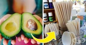 Компания превръща костилките от авокадо в артикули за еднократна употреба