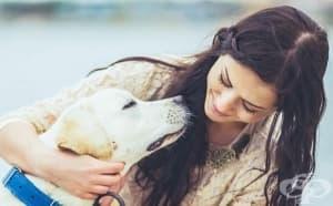 7 неочаквани неща, които кучетата могат да надушат