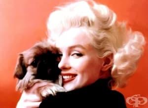 Нека си спомним за Мерилин Монро – вечната, непреходната, неповторимата…
