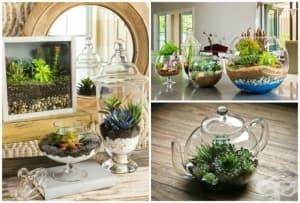 Как да направите миниатюрна градина, която да внесе уют и хармония във всеки дом