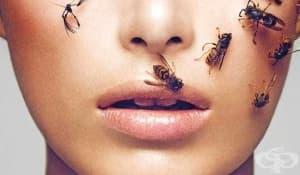 Златна маска, удряне на шамари и пчелна отрова – терапиите, по които холивудските звезди полудяха