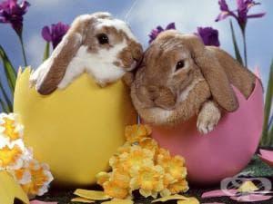 Великден - традиции и обичаи