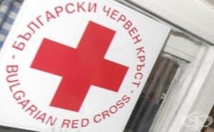 """12 младежи се включиха в проекта """"Изкуството срещу насилието"""" в Кюстендил"""