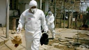 Областният управител на Видин разпореди мерки за ограничаване и ликвидиране на огнищата на птичи грип в региона