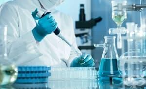 """В """"Пирогов"""" ще изследват безплатно способността на имунни клетки да убиват бактерии"""