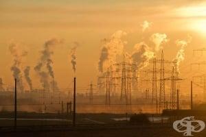 """Мръсният въздух причинява смъртта на близо 14 000 души в България годишно, алармират от """"Въздух за здраве"""""""