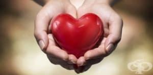 Една история за пропуснатия шанс да дариш живот – или един поглед върху донорството – по писмо от наш читател