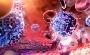 Имунната ни система възприема вредната храна като инфекция