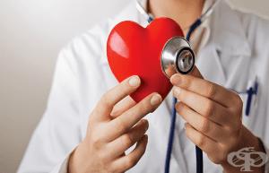 Безплатни кардиологични прегледи в редица градове от страната