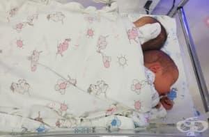 """В пловдивската УСБАЛАГ """"Селена"""" се родиха 12 двойки близнаци през януари"""