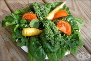 Какво е хлорофил, защо е полезен и в кои храни се съдържа