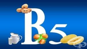 Витамин В5 (Пантотенова киселина)