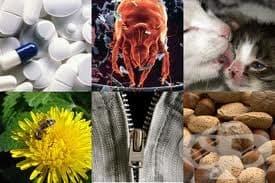 Фактори за развитие на бронхиалната астма