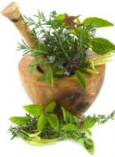 Какви билки могат да се използват при лечение на язвената болест?
