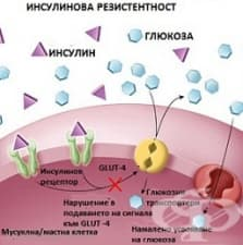 Метаболитни нарушения