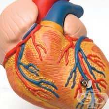 Какви промени настъпват в сърцето при аортна инсуфициенция?