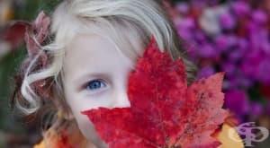 9 мита за аутизма, в които трябва да спрем да вярваме – Част 2