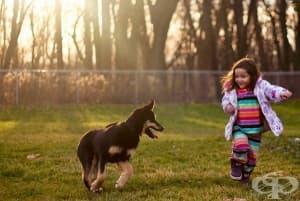 Как опитът оказва влияние върху развитието на детето