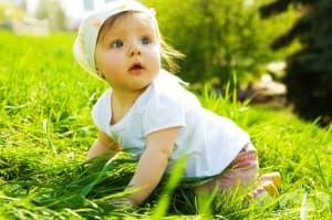 Как бебето опознава света